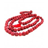Gupta Rudraksh Collection Brown Eyed Rudraksh Mala